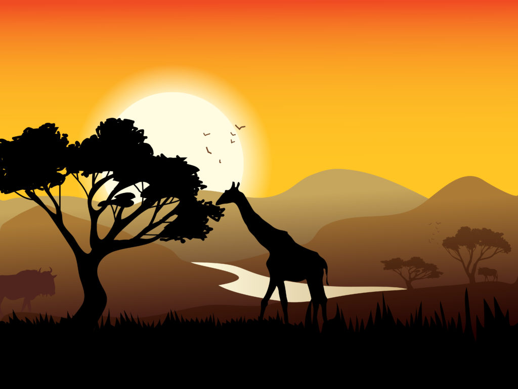 African landscape poster with acacia tree giraffe and sunset on background vector illustration