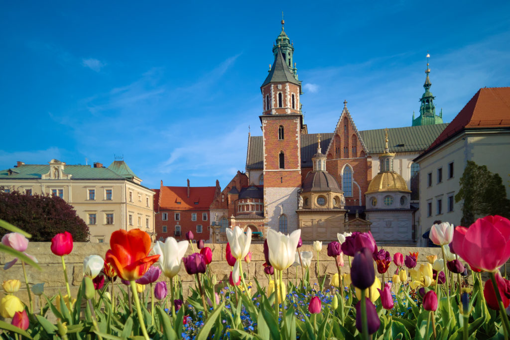 Krakow, flowers in front of Wawel Cathedral